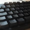 "Ducky DK9087 G2 Pro TKL ""Black Mamba"" Test"